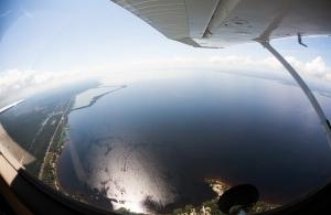 Полет в Межигорье
